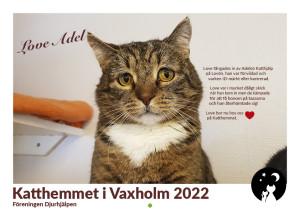 Kattkalender omslag 2022