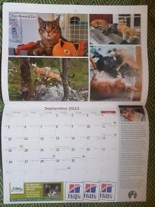 Puff kalender